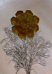 Flor SEMPRE-VIVA (joseferreira3) Tags: work origami o name flor young e livro author vera tempo jos diagrama koti ferreira sempreviva flaviane