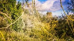 Chateau de Bricquebec (jamy5050) Tags: bricquebec voie verte balade soleil chemin cotentin manche normandie