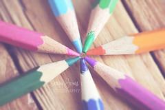 Pencils (Serena178) Tags: macro macromonday pencil pencils colours colour colourful sharp canon5d canon orange pastel purple green blue pink wood explore