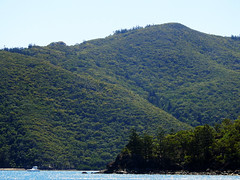 Rolling Hills (Vickyeastwood) Tags: queensland qld whitsundays whitsundayscoast nikon coastline sea ocean sailing catamaran bareboat bareboating charterboat charteryacht nikonp900 p900 nikoncoolpix