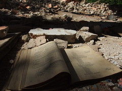DSCF3237 (GW (DGFishing on FB)) Tags: crushed walls urban exploration book