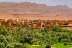 TPD_2831 (Tomasz TDF) Tags: africa afryka marako morocco tinghir soussmassadraa ma