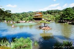 () Tags: fujica st705 m42    fujifilm fuji fujicast705 filmphotography carl zeiss jena flektogon 20mm f4 carlzeissjenaflektogon20mmf4 czj20mmf4 czj zebra 20mmf4 carlzeissjenaflektogon420 rossmann 400 rossmann400 japan kyoto  temple    maple