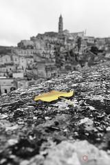 Simply Matera (Ciervo Marcello) Tags: matera canoneos650d sigma1750 profonditdicampo photography panorama basilicata