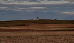 Moulin au milieu des vignes (Mystycat =^..^=) Tags: moulin moulinvent windmill campagne vignes champ ciel soir nuages terre poitoucharentes france vignoble charentemaritime