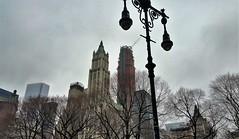 NYC (Helen) Tags: nyc newyork bigapple publiclight lightpost skyscrapers crane trees