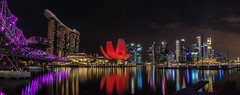 Red Blossom (D Song) Tags: travel singapore marina bay asia southeast hotel water night city urban bridge helix red purple reflection panorama sky architecture canon dslr colors