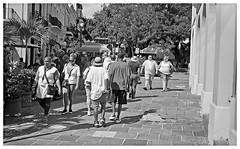 Turistas en San Juan (Tourists in San Juan) (Samy Collazo) Tags: kodakpony135c turistas tourists sanjuan oldsanjuan viejosanjuan puertorico bn bw streetphotography fotografiacallejera
