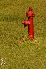 DeQuincy, LA (sirchuckles) Tags: hydrant firehydrant dequincy louisiana