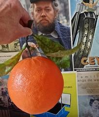 20161018 kanjer (enemyke) Tags: pixeldiary 2016 oktober kanjer leendert jacobsmodes groot reus sinaasappel naranja orange
