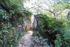 IMG_3678 (Schlueter1992) Tags: neuseeland2016urlaub abeltasmannationalpark tasman neuseeland