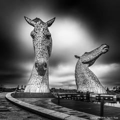 The Kelpies (roseysnapper) Tags: bw nikkor2470f28 nikond810 blackandwhite circularpolarizer falkirk kelpies scotland art canal horse monochrome sculpture
