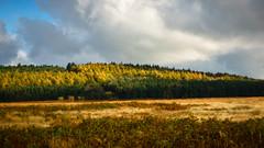 Autumn slash (milo42) Tags: peak district national park httpwwwchrisnewhamphotographycouk 2016 meetup chatsworth peakdistrictnationalpark peakdistrict beeley england unitedkingdom gb