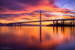 The New Kid in Town - East Span Bay Bridge (Aron Cooperman) Tags: aroncooperman baybridge california eastspanbaybridge escaype landscape northerncalifornia november2016 openlightphoto sanfrancsico seascape sunrise treasureisland wbpa nikond800 reflection water bridge longexposure