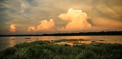 Clouds Above Upper Lake Myakka (wyojones) Tags: florida myakkariverstatepark uppermyakkalake water lake sunset clouds cloudscape thunderhead lakeshore marsh orange sky
