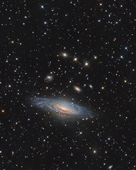 NGC 7331 and the Deer Lick Group (Paddy Gilliland @ Image The Universe) Tags: space stars galaxy dsw ngc7331 astronomy astro astrophotography rcos
