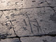 EM515123.jpg (Tassie Fig) Tags: bigtrip olympus yxornashäll mzuiko sweden 2016 mirrorless prehistory u43 microfourthirds skåne m43 omd zuiko hällristning 1240mmf28 em5 europe fornminne österlen simrishamn swe