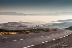 from Relizane to Tiaret, a journey through the clouds (Algeria) (zedamnabil) Tags: algeria route road travel voyage algerie tiaret relizane ghelizane ouest mountain clouds morning cloudy sunrise north africa atlas roadtrip fog foggy