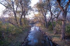 Late spring NOV 2016 (TONY VIKLICKY) Tags: nikon d3 tamron 1735 di sp stream water fx showcase