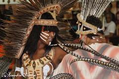 CULTURA (Evandro Photografy) Tags: desfiledaescolaimperatrizdonaleopoldinafotoevandrooliv desfile da escola imperatriz dona leopoldina foto evandro oliveirapmpa