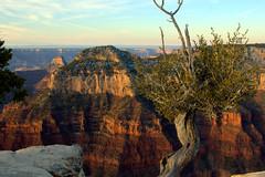 Grand Canyon North Rim (badvoodoo404) Tags: 2016 us southwest winter park nps canyon grand national arizona north rim sunrise