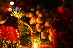 golden grapes (Katrinitsa) Tags: christmas2016 christmas christmasdecoration christmaslights lights tree christmastree season holidays holiday colors bokeh decoration red yellow green light cherries golden stripes balls passion grapes apple orange lamp shadow shadows house indoors interior design sparkling sparklinglights golddust vibrant vivid bold newyear 2017 family perfect beauty inspiration inspiring hope warm imagination imaginative shine shining night canon ef35mmf14lusm happy happiness dream magic ornaments merrychristmas happynewyear artistic festive awesome fairytale amazing impressive detail