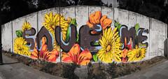 Graffiti - Save me (Y.Rostom) Tags: street urban flower art fleur architecture algeria couleurs culture dessin peinture rue extérieur bâtiment algérie murs afrique annaba séraidi