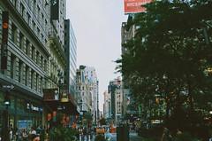 Herald Square. (saul1494) Tags: new york city nyc usa ny newyork tree cars nature america square landscape unitedstates manhattan taxi landmark avenue heraldsquare vsco vscocam vscogrid vscony