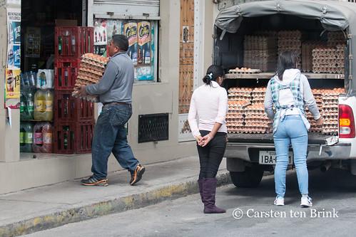 Ecuador's eggs (