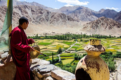 Buddhist monk at Chemrey Gompa in Ladakh (marcusfornell) Tags: india asia asien buddha prayer monk buddhism tibet monastery instrument service lama indien ladakh gompa hemis southasia buddhismus jammuandkashmir chemrey sdasien earthasia