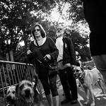 Dog walkers thumbnail