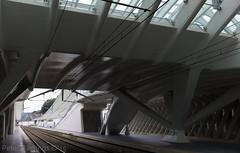 L1087259 (peterbastingsfotografie) Tags: liègeguilleminsrailwaystation stationliègeguillemins peterbastings leicameetingluxemburg