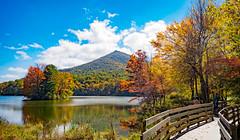 Along Abbott Lake (Michael Kline) Tags: autumn mountain lake fall virginia otter peaks abbott blueridgeparkway sharptop