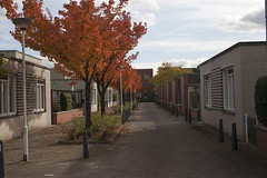 Floriade_251015 (Bellcaunion) Tags: park autumn fall nature zoetermeer rokkeveen florapark