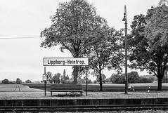 TrainStation... (Heinz Wille) Tags: leica bw bahnhof rangefinder trainstation m8 nrw schwarzweiss münsterland westfalen withoutpeople lippborg