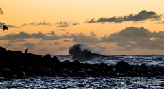 Kauai: Body & Soul (Arnau P) Tags: sunset beach silhouette yellow hawaii wave kauai napali kee keebeach napalicoast