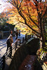 20151219-DSC_4747.jpg (d3_plus) Tags: street autumn autumnfoliage sky fall nature japan nikon scenery shrine kamakura daily autumnleaves 日本 streetphoto 28105mmf3545d 紅葉 nikkor 秋 自然 神社 寺 空 dailyphoto touring 風景 thesedays 鎌倉 神奈川 28105 景色 28105mm 日常 路上 holyplace ツーリング 古都 zoomlense 広角 ancientcapital ストリート ニコン ズーム 聖地 28105mmf3545 d700 281053545 kanagawapref nikond700 aiafzoomnikkor28105mmf3545d 路上写真 28105mmf3545af aiafnikkor28105mmf3545d