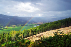 Strathtay (eric robb niven) Tags: ericrobbniven scotland athollwoods landscape summerwatch autumnwatch nature