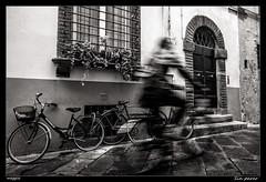 Sin parar (meggiecaminos) Tags: italia italy toscana tuscany lucca streetphotography street strada calle bicicleta bicicletta bicycle ventana finestra window door puerta porta urbanlandscape fotografaurbana bw bn bianco blanco black negro nero white ciclista