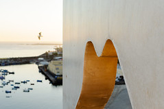 Untitled (Rui  Pereira) Tags: concrete forms sines goldenlight seagull silhouette