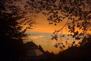 Sun Rising on Autumn