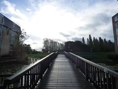 Molenvlietpark, Woerden (atYlona) Tags: woerden molenvliet autumn fall clouds park netherlands dutch