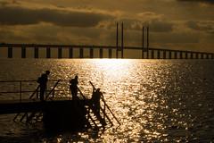 On the Dock (Infomastern) Tags: malm sibbarp bridge bro brygga dock hav mnniska people pier sea silhouette siluett water resundsbron exif:model=canoneos760d geocountry camera:make=canon exif:isospeed=100 camera:model=canoneos760d geostate geocity exif:aperture=20 exif:lens=efs18200mmf3556is geolocation exif:focallength=80mm exif:make=canon