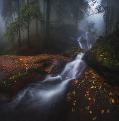 Misty river (Krasi St Matarov) Tags: autumn water waterfall outdoor landscape fog forest workshop river tree bulgaria nikon mountain phototour adventure leaves longexposure nature