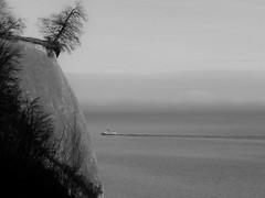 wie lange noch ... (Wunderlich, Olga) Tags: nationalparkjasumund rgen insel sassnitz deutschland mecklenburgvorpommern vorpommernrgen kreidefelsen kreide steilufer steilkste steine ostsee meer baum schiff natur landschaft naturfoto