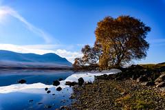 Altnaharra on a beautiful Sunday (Alan Cruickshank.) Tags: nikond750 tamron1530mm altnaharra sutherland highland scotland scottishhighlands outdoors loch strathnaver