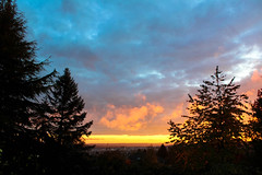Sunset, Langley, BC, Canada, lucky me, view from the garden (Dith Mac Piarais) Tags: garden trees dark light nature view city dusk night weather sunlight shine skyline