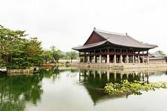 Seoul: Gyeongbokgung (stuckinseoul) Tags: photo asian  photograph seoul asia sigma2470mmf28exdghsm gyeongbokgung  southkorea city korean canoneos6d korea capital  kr