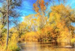 rapid creek in the fall (Father Tony) Tags: fall october adobephotoshop autumn canon50d canonefs1755mmf28isusm colorful canon ortoneffect landscape southdakota sd rapidcity unitedstates