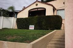Post election yard sign plea (ADMurr) Tags: la mt washington eastside pray spanish leica m 240 35mm summaron election trump revival